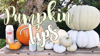 TOP 5 TIPS FOR PUMPKINS 🎃