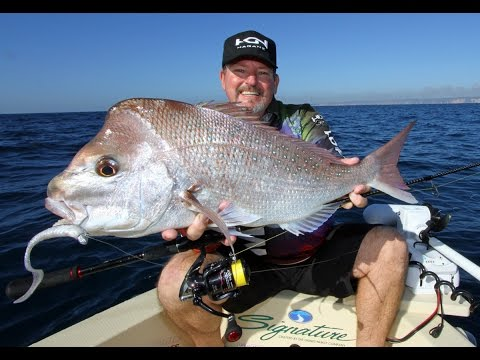 How To Catch Snapper On Soft Plastics With Scotto & Nath