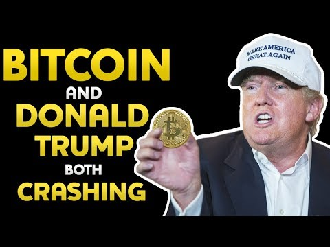 BUSINESS and MONEY Donald Trump and Bitcoin both CRASHING why PEOPLE were FOOLED how to move FORWARD