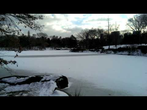 Central Park NYC - The Ramble in the snow