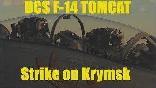 Ralfi's Alley - DCS F-14 Tomcat Strike on Krymsk