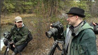 Nikon D800E Field Test with Nick Devlin