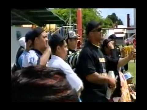 KILLER BEEZ (Auckland) BEEZ STING - DOCUMENTARY