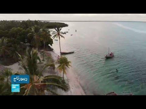 جزيرة مافيا في تنزانيا.. وجهة للسياح الباحثين عن الاستمتاع بعالم الأحياء المائية  - نشر قبل 31 دقيقة