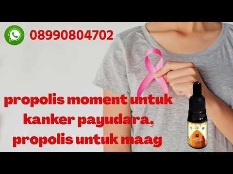 propolis moment untuk kanker payudara, propolis untuk maag 082281627462 WA