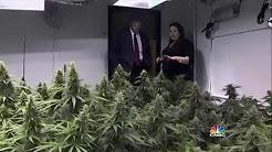 Marijuana in America: Colorado Pot Rush - CNBC documentary (HD)