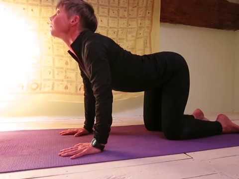 how you can do catcow stretch chakravakasana  fitness