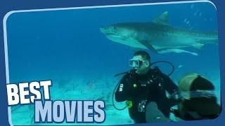 Ozeane dieser Welt - Haitaucher - Tierdokumentation ganze Episode auf Deutsch