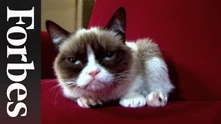 Grumpy Cat: The Forbes Interview