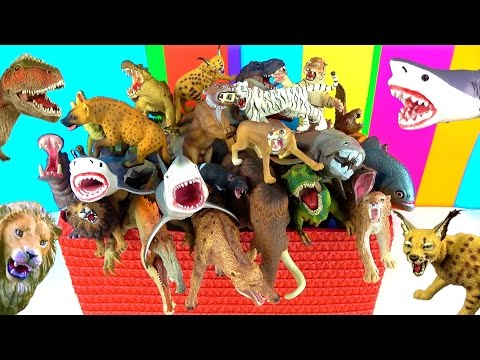 Wild Animals Sharks Whales Dinosaurs Fish Prehistoric Animals Marine reptiles - Educational