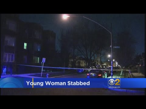 Woman Stabbed To Death In Chicago Lawn
