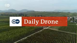 #DailyDrone: Weingut Vögeli | DW Deutsch