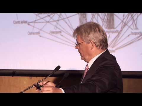 ProfessorThomas Elmqvist from Stockholm University at the UCD AESOP Conference, 2013.
