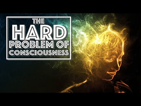 The Hard Problem of Consciousness (Video Essay)