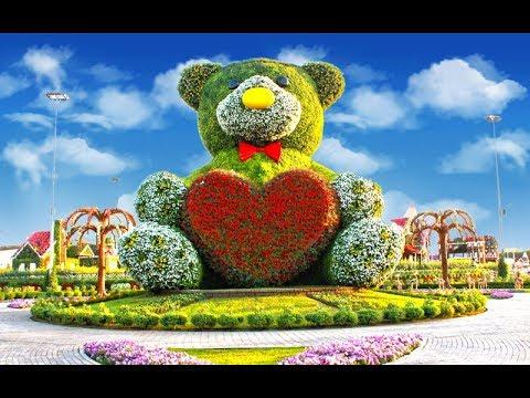 Дубай сад цветов как добраться на метро аренда дома в дубае на месяц