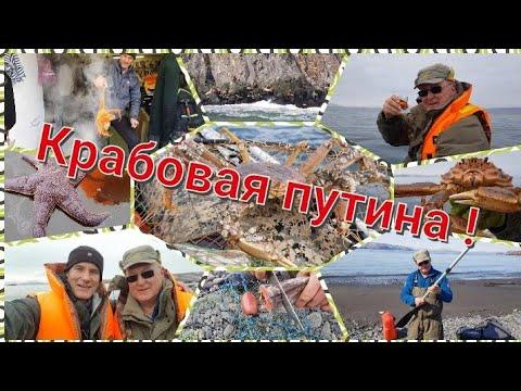 Рыбалка на Камчатке. Крабовая путина началась ! Ловим краба-стригуна.