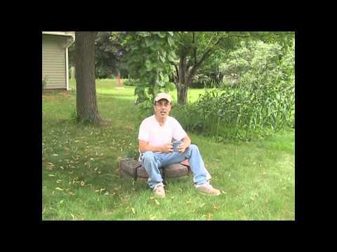Garden Pests and Helpers