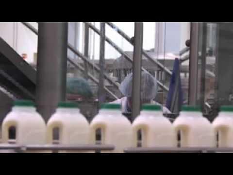 Robert Wiseman Daires - procures, processes and delivers liquid milk