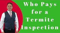 Who Pays for a Termite Inspection When Buying a Home