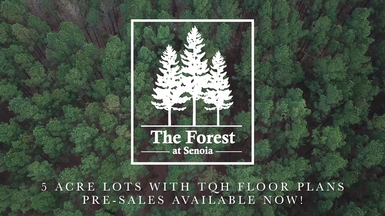 The Forest Of Senoia By Trademark Quality Homes Youtube