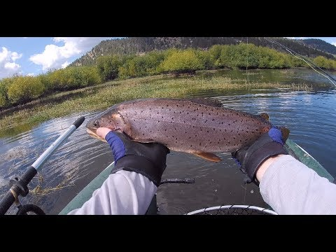 Fly fishing Panguitch lake from kayaks and pontoon boats