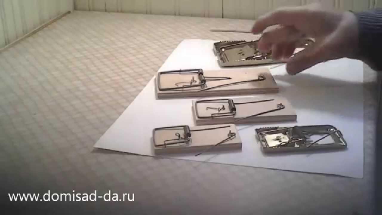 Мышеловка (инструкция)
