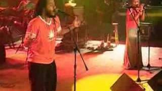 ziggy marley and the melody makers in concert justice.