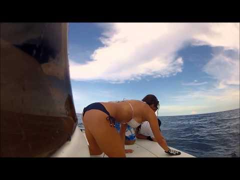 OFFSHORE FISHING STUART FL