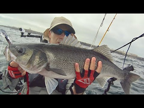 Big Sea Bass at Offshore Reefs - Trolling with lures - Kayak Fishing - 4K 50fps