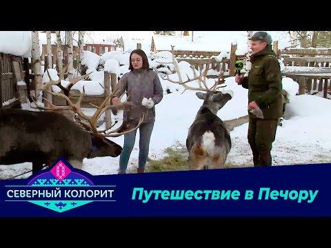 Северный колорит: Путешествие в Печору.  26.11.19