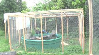 #10 Keeping and Handling: portable aviaries and predator proofing
