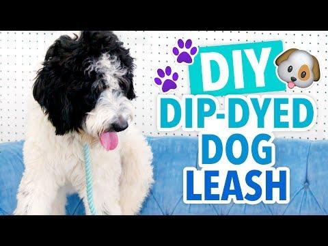 DIY Dip-Dyed Dog Leash - HGTV Handmade