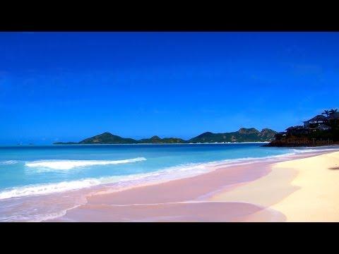 Bruit De La Mer et des Mouettes - HD Plage - Bruit des Vagues