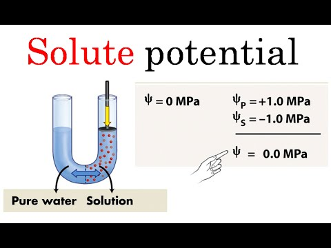 Solute potential | formula and problems for CSIR NET life sciences ...