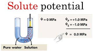 Solute potential | formula and problems for CSIR NET life sciences thumbnail