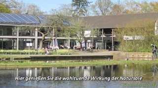 Bad Waldliesborn: Das Video
