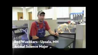 Animal Science at the University of Minnesota, Crookston - Student Ben Wuebkers