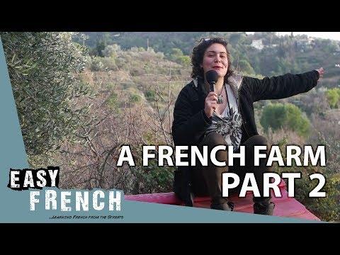 Tiếng Pháp bài 29