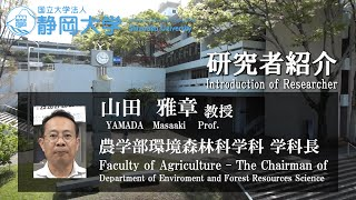 「相分離ブレンドを利用した新規木材用接着剤の開発」山田雅章 教授 - 静岡大学 農学領域 【研究者紹介】