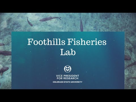 CSU Foothills Fisheries Laboratory