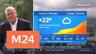 """""""Утро"""": небольшое похолодание придет в столицу - Москва 24"""