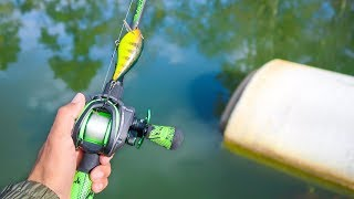 Catching GIANT Bass in SMALL Ponds (Bank Fishing)