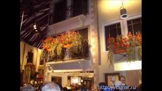 Выставка цветов Хайфа Израиль. Розы, Улицы Парижа(Выставка цветов Ирина Котельникова На выставке цветов в Хайфе Израиль представлено огромное количество..., 2012-04-10T16:42:15.000Z)