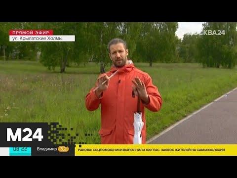 """""""Утро"""": дождливая погода ожидается в столичном регионе 27 мая - Москва 24"""