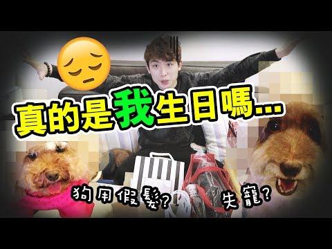 【🎁生日禮物開箱】真的是我生日嗎...😃失寵了?給狗狗的「美人假髮」!?#上集(中字)