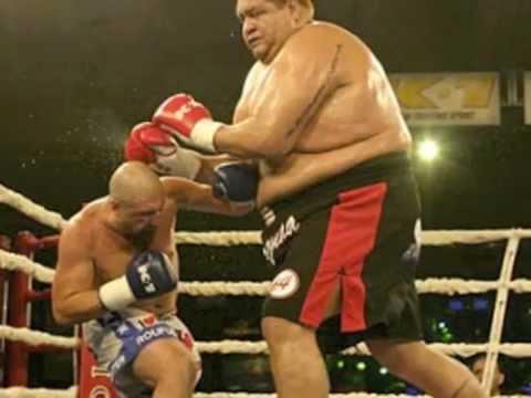 Consider, Midget sumo wrestlers excellent idea