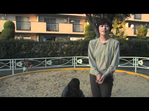 中野澄子さんから映像が届きました