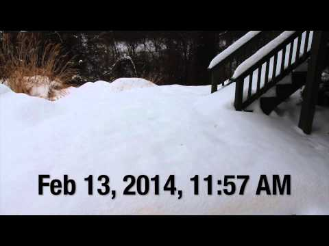 Winter Storm Pax- Snowfall Time-lapse (36 hours)