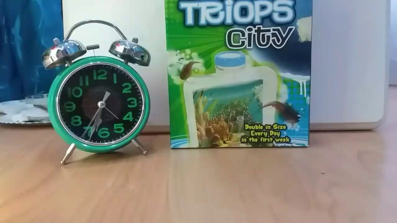 How To Grow Triops Part 1