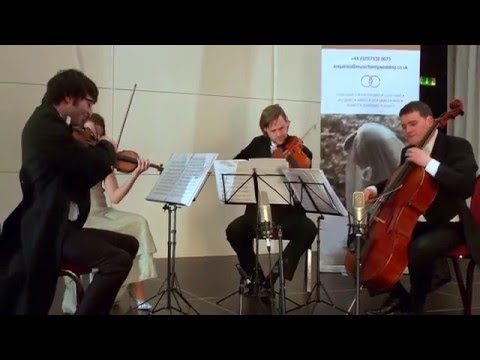 Music For My Wedding String Quartet | Jazz/Tango | Anything Goes | Por una Cabeza